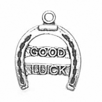 Good Luck Horseshoe