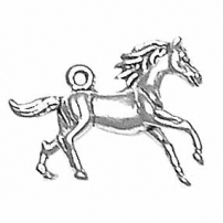 Galloping Pony, Horse